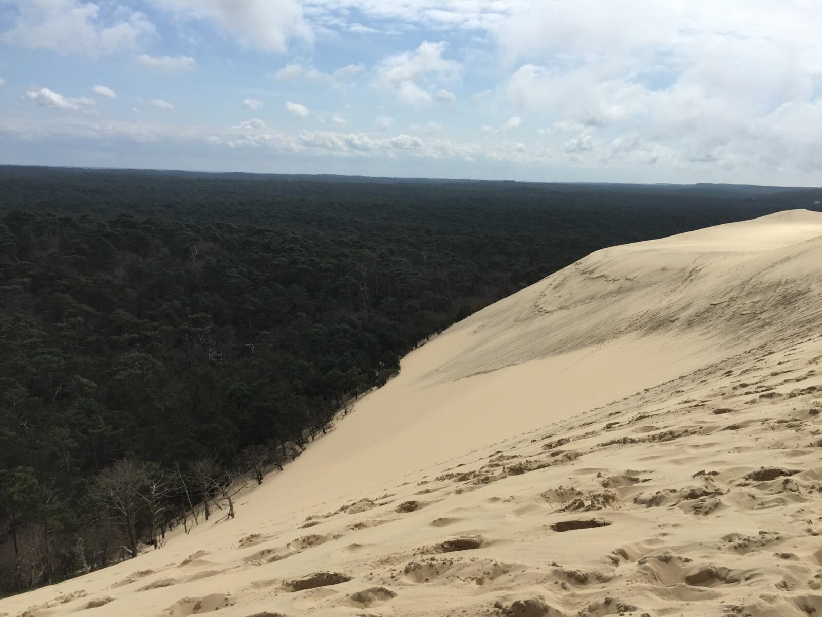 dune du pilas
